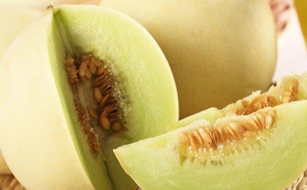 Waarom is de galia meloen zo gezond?