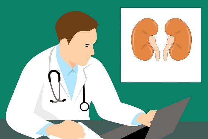 Hoe voorkom je nierschade en hou je je nieren gezond?