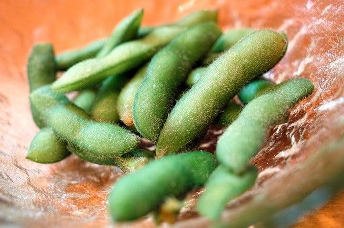 Top 5 plantaardige eiwitbronnen