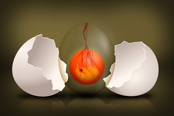 Waarom is proteïnerijk voedsel gunstig als je wilt afvallen?