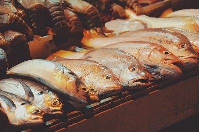Waarom vette vis zo gezond is!