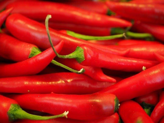 'Top 10 vetverbrandende voedingsmiddelen!'