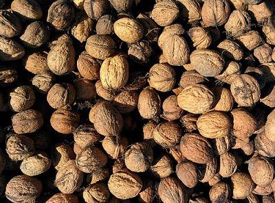 Waarom walnoten zo enorm gezond zijn!